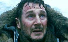 "Celda de cifras: Liam Neeson lidera la taquilla con ""Infierno blanco"""