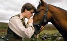 """Conexión Oscar 2012: El caballo de Spielberg no galopa, las posibilidades de Terrence Malick y el """"Millennium"""" de Fincher quiere estar presente"""