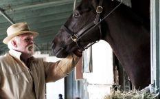 Cine en serie: La muerte de tres caballos provoca la cancelación de