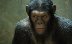 """Espresso: Matt Reeves dirigirá la secuela de """"El origen del planeta de los simios"""""""