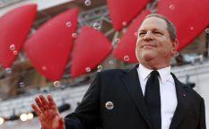"""Conexión Oscar 2014: """"Philomena"""" y """"El mayordomo"""" se convierten en las mejores opciones de los Weinstein"""