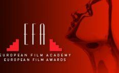 Espresso: Las nominaciones de los premios del cine europeo 2013