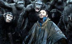 Celda de cifras: Los simios siguen imponiendo su ley