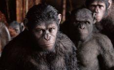 Las listas de Vinz Clortho: Simios maléficos del cine