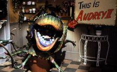 """Espresso: Remake de """"La tienda de los horrores"""", no riegues las plantas"""