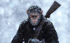 Celda de cifras: Los simios toman la taquilla