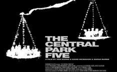 Cine en serie: Ava DuVernay y el error judicial de