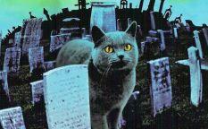 """Espresso: Nueva versión de """"Cementerio viviente"""""""