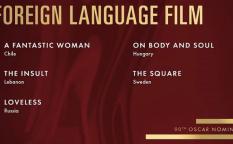 Conexión Oscar 2018: Película de habla no inglesa