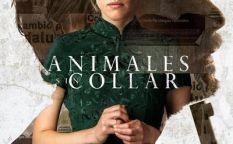"""Animales sin collar"""