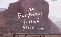 """""""An elephant sitting still"""""""