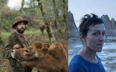 Conexión Oscar 2021: Los críticos de Chicago, Florida e Indiana eligen a sus ganadores