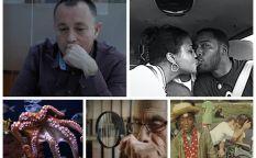 Conexión Oscar 2021: Documental