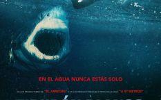 """""""Tiburón blanco"""""""