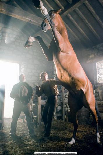 Warhorse03