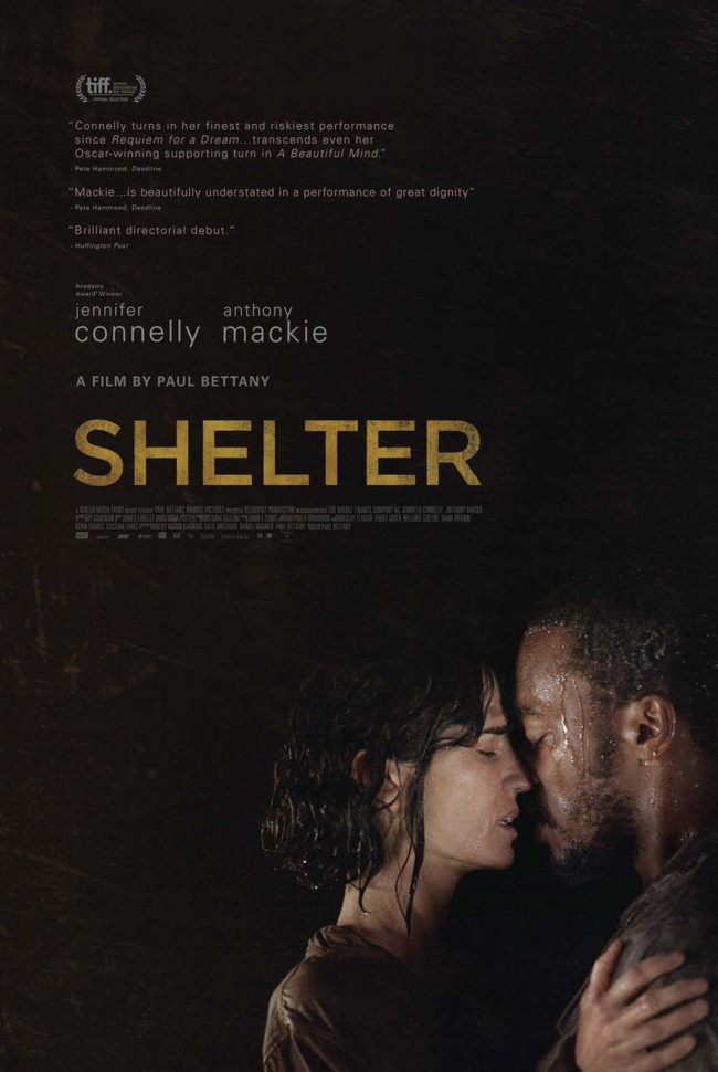 ShelterCartel02